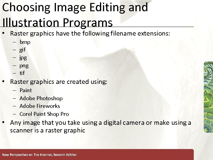 Choosing Image Editing and Illustration Programs • Raster graphics have the following filename extensions: