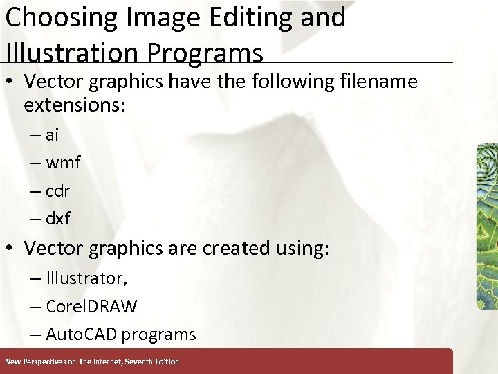 Choosing Image Editing and Illustration Programs • Vector graphics have the following filename extensions: