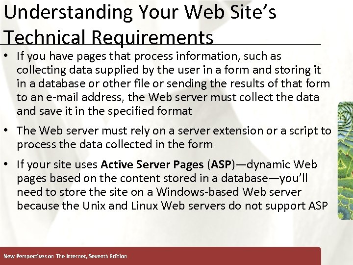 Understanding Your Web Site's Technical Requirements XP • If you have pages that process