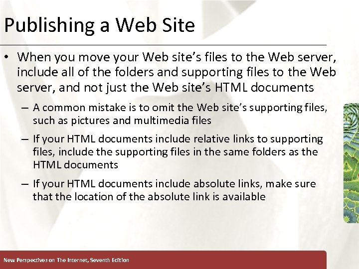 Publishing a Web Site XP • When you move your Web site's files to