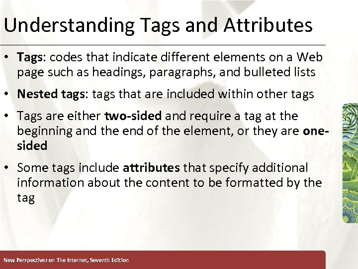 Understanding Tags and Attributes XP • Tags: codes that indicate different elements on a