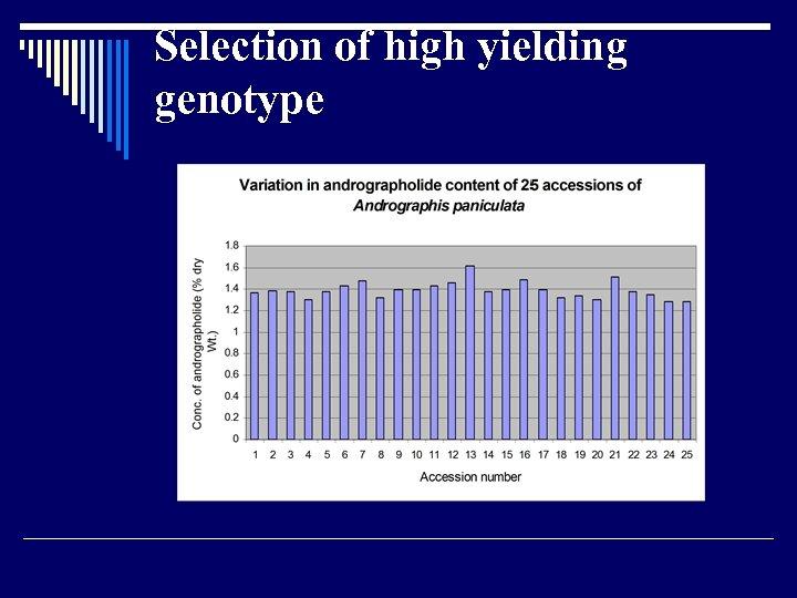 Selection of high yielding genotype