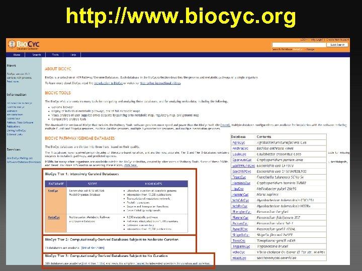 http: //www. biocyc. org