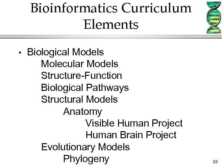 Bioinformatics Curriculum Elements • Biological Models Molecular Models Structure-Function Biological Pathways Structural Models Anatomy