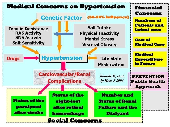 Medical Concerns on Hypertension Genetic Factor Insulin Resistance RAS Activity SNS Activity Salt Sensitivity