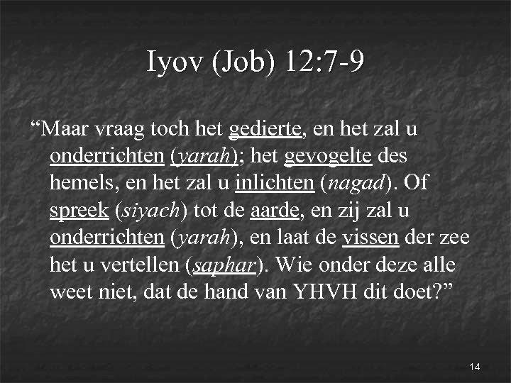 """Iyov (Job) 12: 7 -9 """"Maar vraag toch het gedierte, en het zal u"""