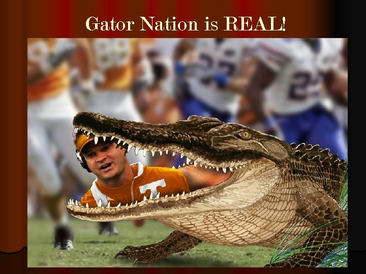 Gator Nation is REAL!