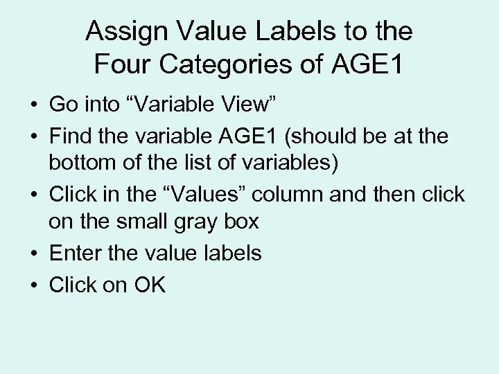 """Assign Value Labels to the Four Categories of AGE 1 • Go into """"Variable"""