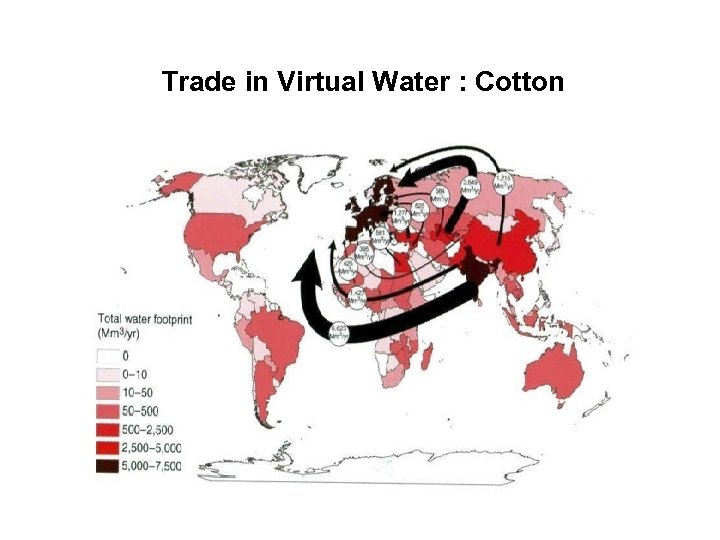 Trade in Virtual Water : Cotton