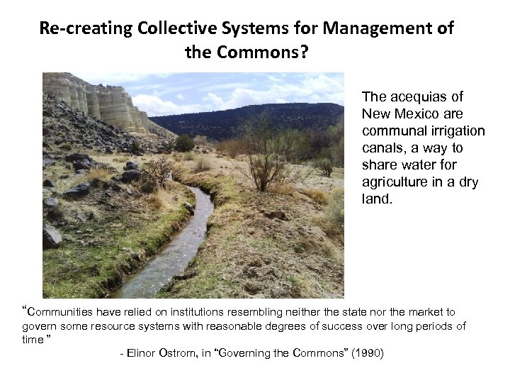Re-creating Collective Systems for Management of the Commons? The acequias of New Mexico are