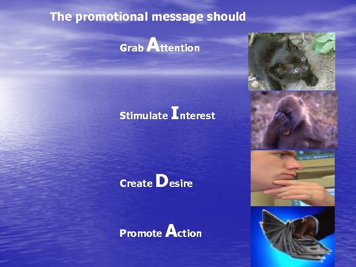 The promotional message should Grab Attention Stimulate Create Interest Desire Promote Action
