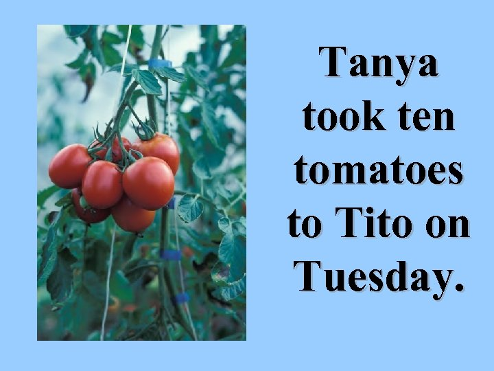 Tanya took ten tomatoes to Tito on Tuesday.