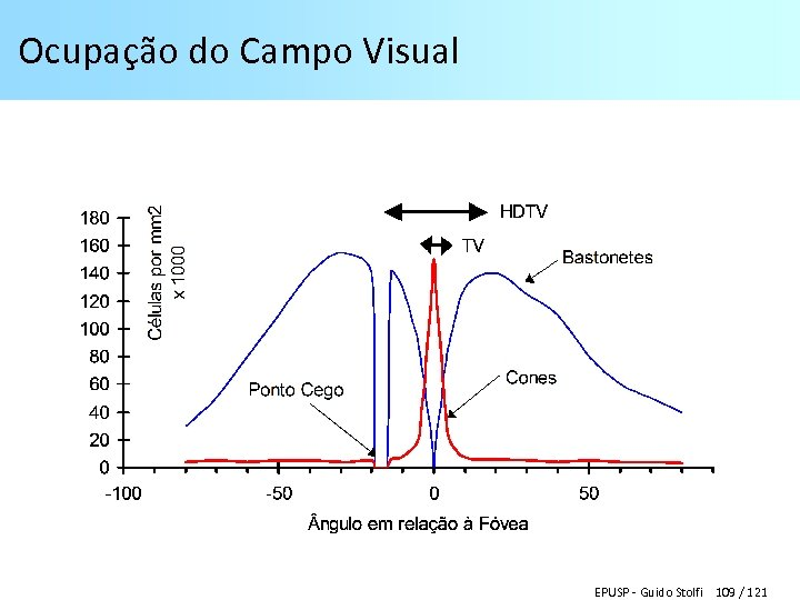 Ocupação do Campo Visual EPUSP - Guido Stolfi 109 / 121