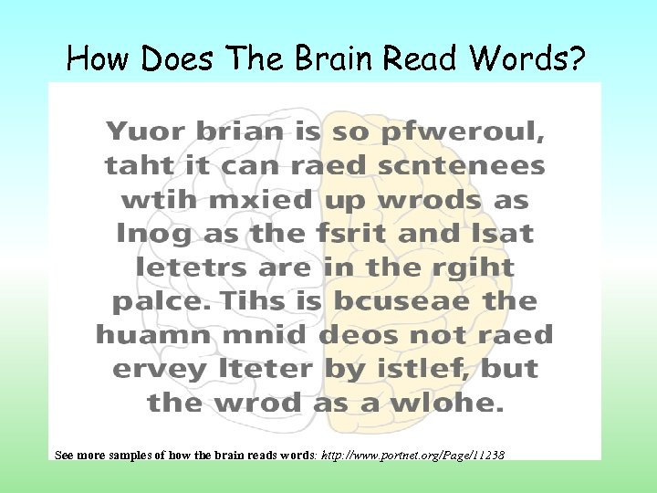 How Does The Brain Read Words? See more samples of how the brain reads