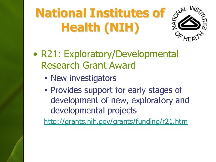 National Institutes of Health (NIH) • R 21: Exploratory/Developmental Research Grant Award § New