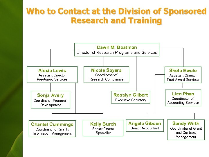 Who to Contact at the Division of Sponsored Research and Training Dawn M. Boatman
