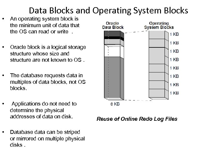 Data Blocks and Operating System Blocks • An operating system block is the minimum
