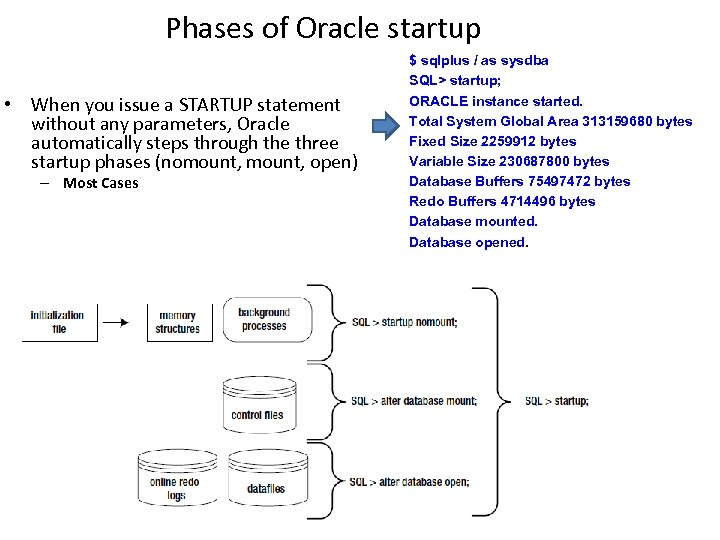 Phases of Oracle startup • When you issue a STARTUP statement without any parameters,