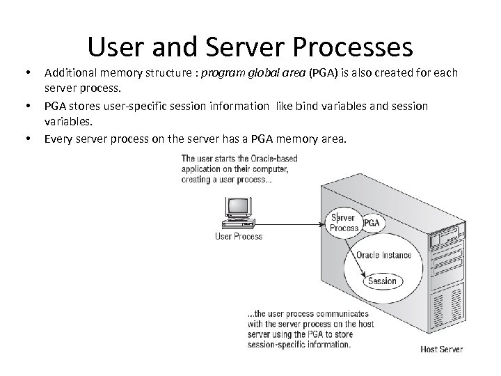 User and Server Processes • • • Additional memory structure : program global area