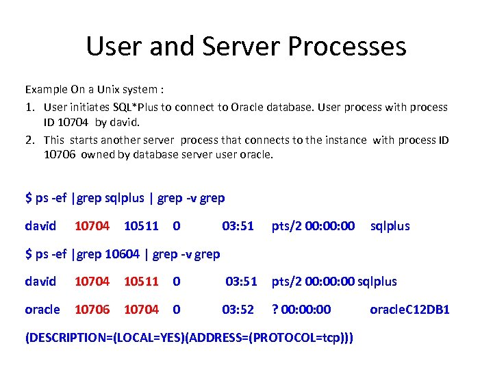 User and Server Processes Example On a Unix system : 1. User initiates SQL*Plus