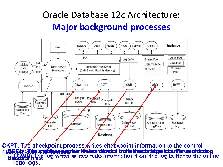Oracle Database 12 c Architecture: Major background processes CKPT: The checkpoint process writes checkpoint