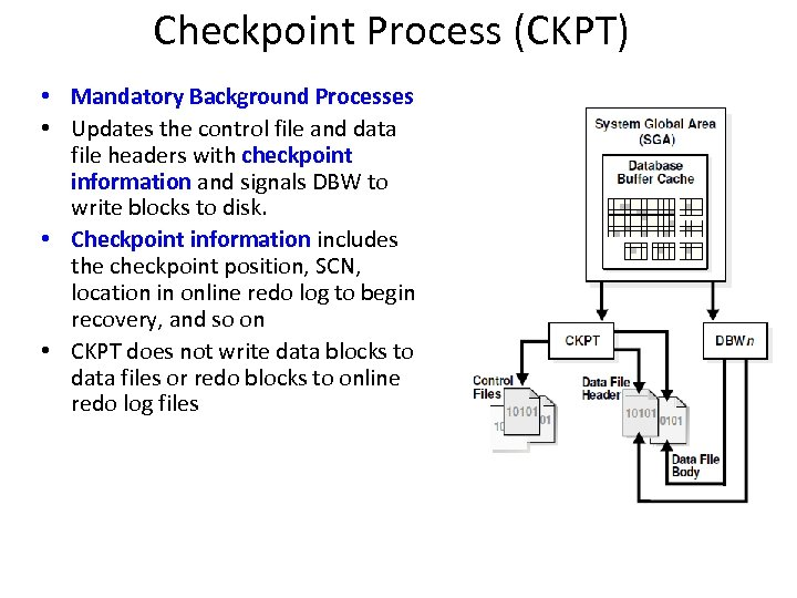 Checkpoint Process (CKPT) • Mandatory Background Processes • Updates the control file and data
