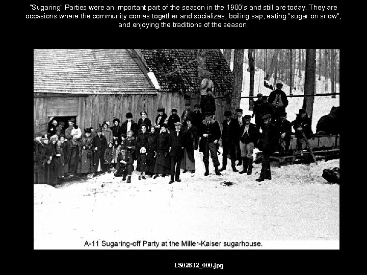 """Sugaring"" Parties were an important part of the season in the 1900's and still"