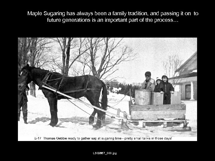 Maple Sugaring has always been a family tradition, and passing it on to future