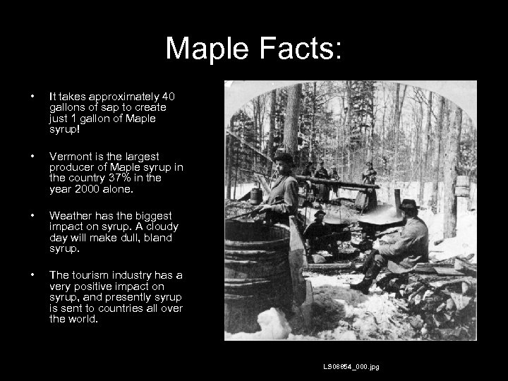 Maple Facts: • It takes approximately 40 gallons of sap to create just 1