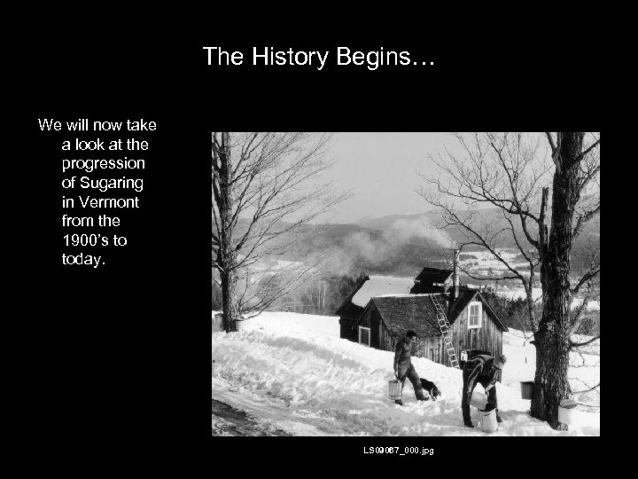 The History Begins… We will now take a look at the progression of Sugaring