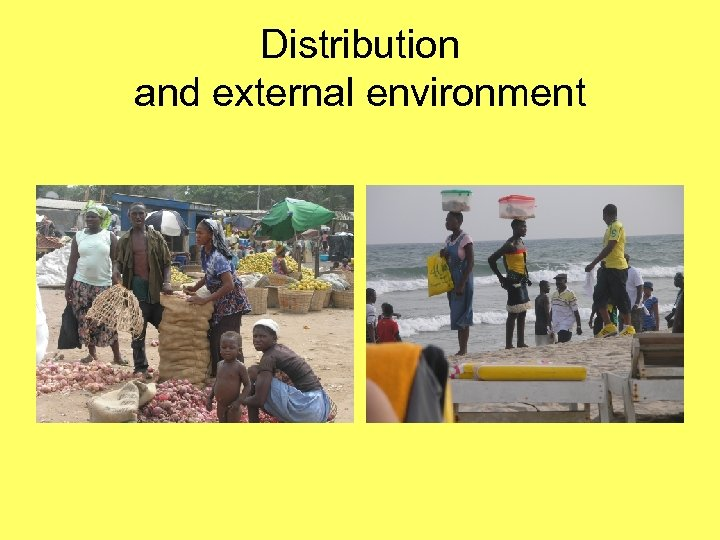Distribution and external environment