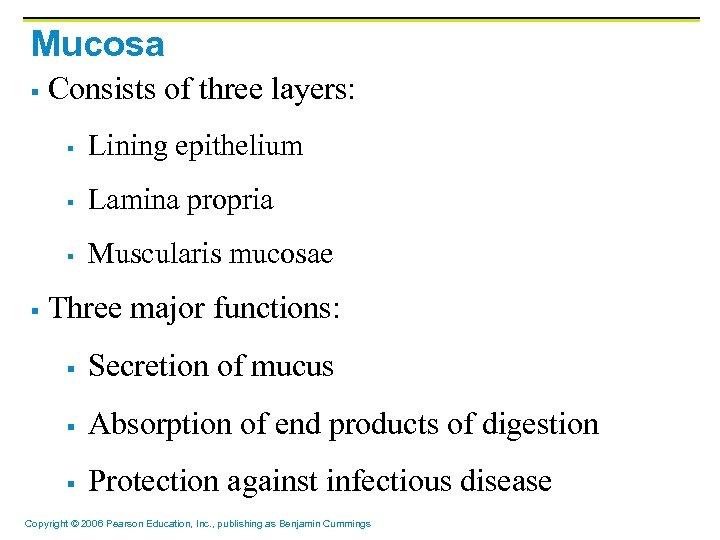 Mucosa § Consists of three layers: § § Lamina propria § § Lining epithelium