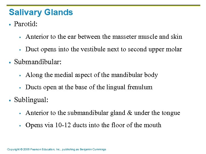 Salivary Glands § Parotid: § § § Anterior to the ear between the masseter