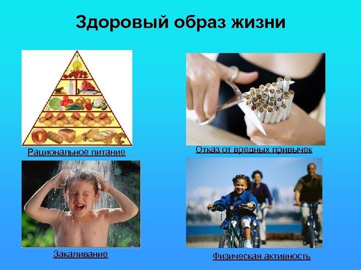 Здоровый образ жизни Рациональное питание Закаливание Отказ от вредных привычек Физическая активность