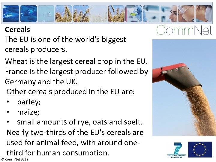 Cereals The EU is one of the world's biggest cereals producers. Wheat is the
