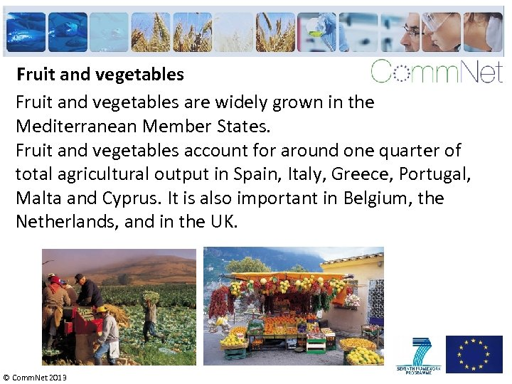 Fruit and vegetables are widely grown in the Mediterranean Member States. Fruit and vegetables