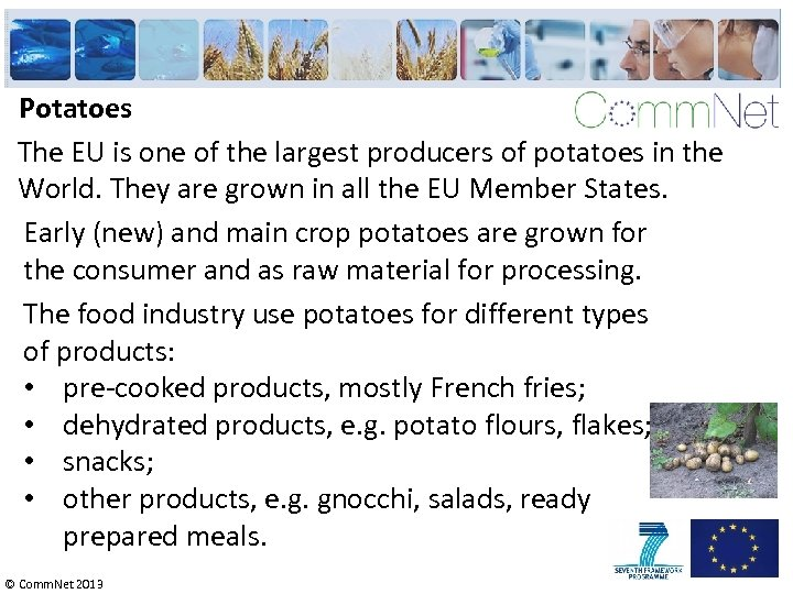 Potatoes The EU is one of the largest producers of potatoes in the World.