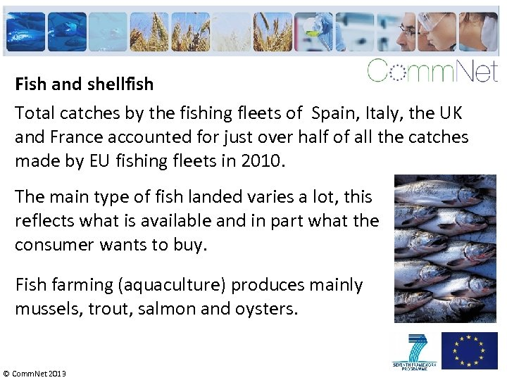 Fish and shellfish Total catches by the fishing fleets of Spain, Italy, the UK