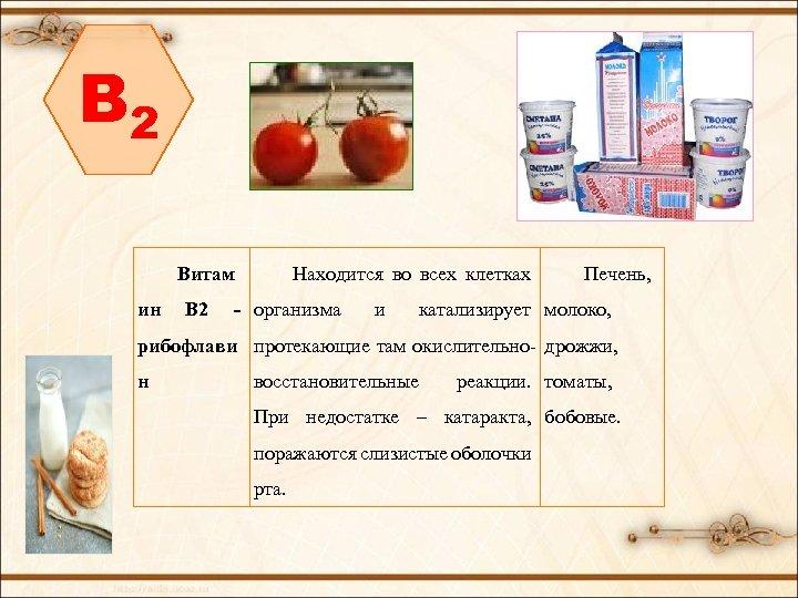 B 2 Витам Находится во всех клетках ин В 2 - организма и Печень,