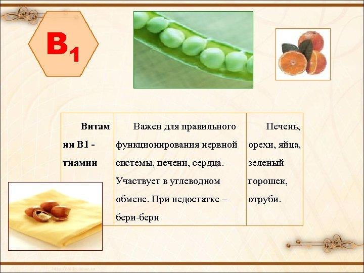 B 1 Витам Важен для правильного Печень, ин В 1 - функционирования нервной орехи,