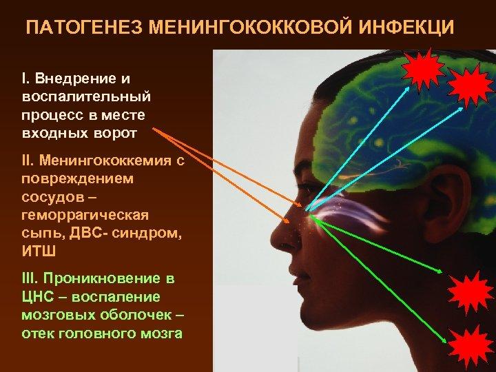 ПАТОГЕНЕЗ МЕНИНГОКОККОВОЙ ИНФЕКЦИ I. Внедрение и воспалительный процесс в месте входных ворот II. Менингококкемия