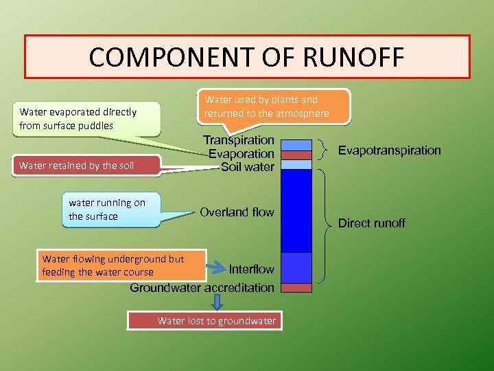 COMPONENT OF RUNOFF Water used by plants and returned to the atmosphere Water evaporated