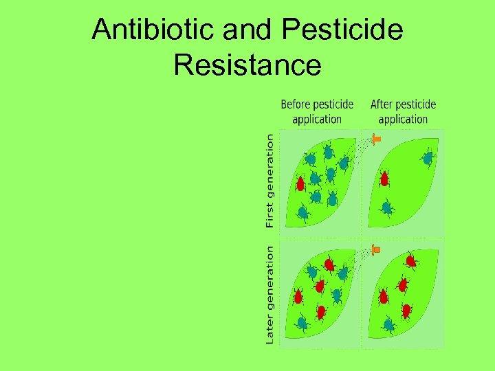 Antibiotic and Pesticide Resistance