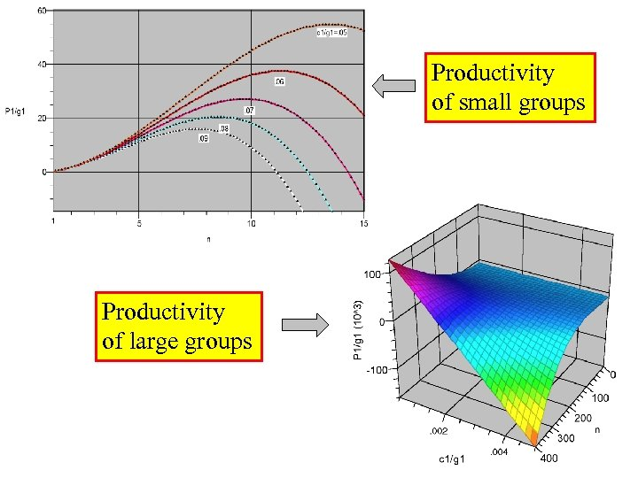 Productivity of small groups Productivity of large groups