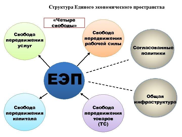 Структура Единого экономического пространства «Четыре свободы» Свобода передвижения рабочей силы Свобода передвижения услуг Согласованные