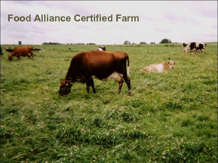 Food Alliance Certified Farm