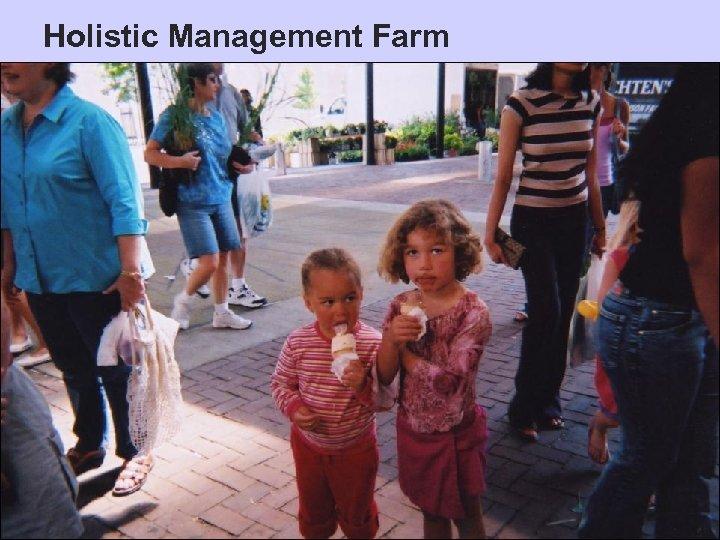 Holistic Management Farm