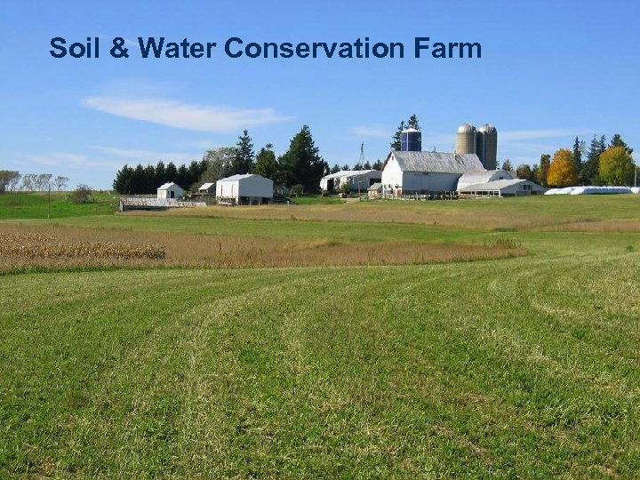 Soil & Water Conservation Farm
