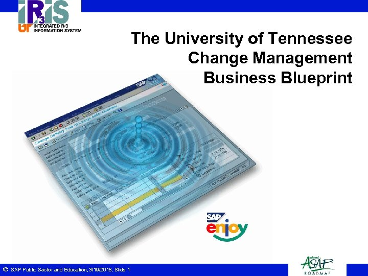 The University of Tennessee Change Management Business Blueprint ã SAP Public Sector and Education,