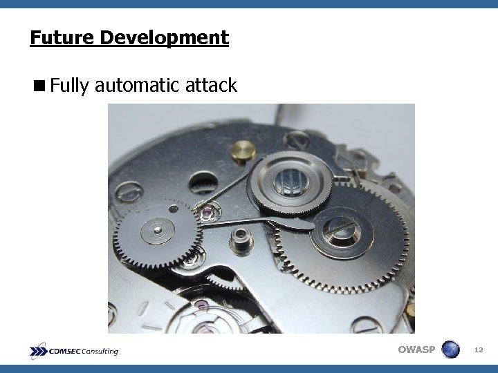 Future Development <Fully automatic attack OWASP 12